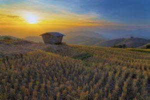 Thailand ist ein klassisches Reiseziel für Backpacker