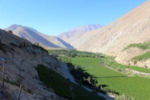 Das Valle de Elqui ist die wichtigste Pisco-Provinz in Chile