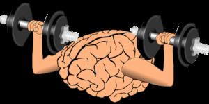 Das Lernen von Sprachen - ein ausgezeichnetes Training für das Gehirn.