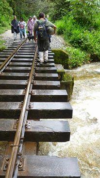 Machu Pichhu kann auch von Hidroelectrica oder Ollantaytambo aus zu Fuß über die Bahnschienen erreicht werden.