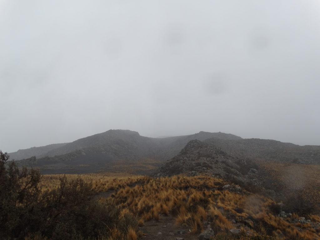 misti-regen